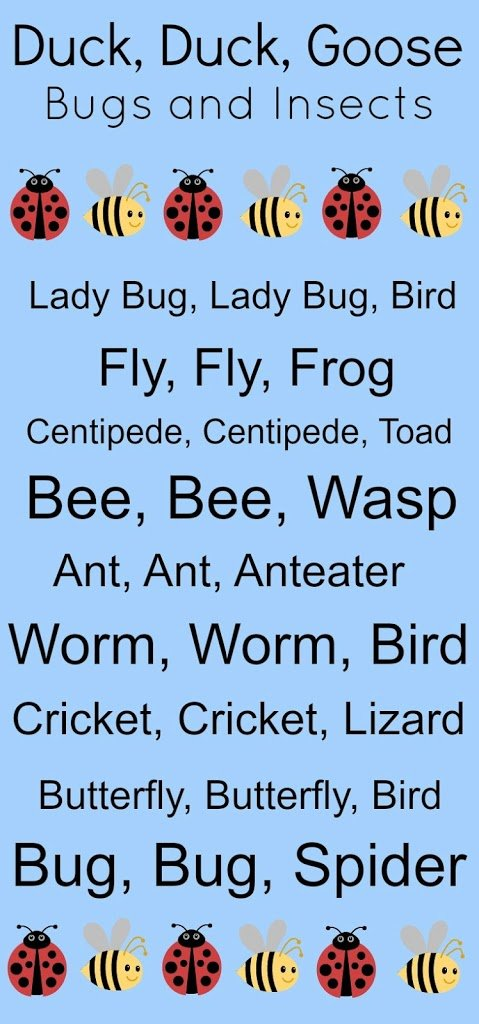 Duck, Duck Goose – Learning about Bugs and Insects Variation