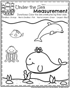 Kindergarten Measurement Worksheet - Color the Fish By Size