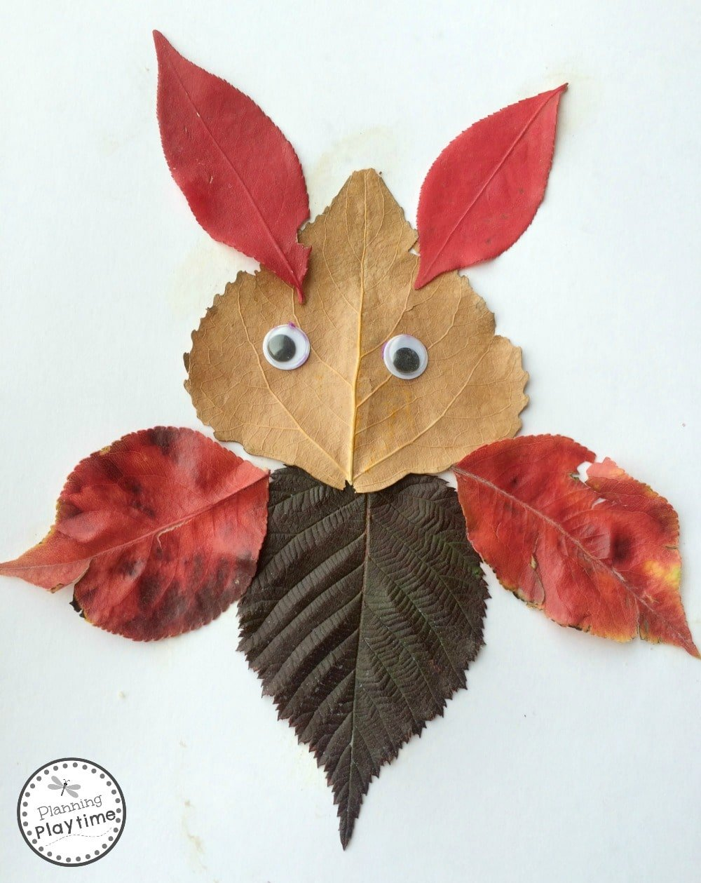 Educational Activities with Fall Leaves