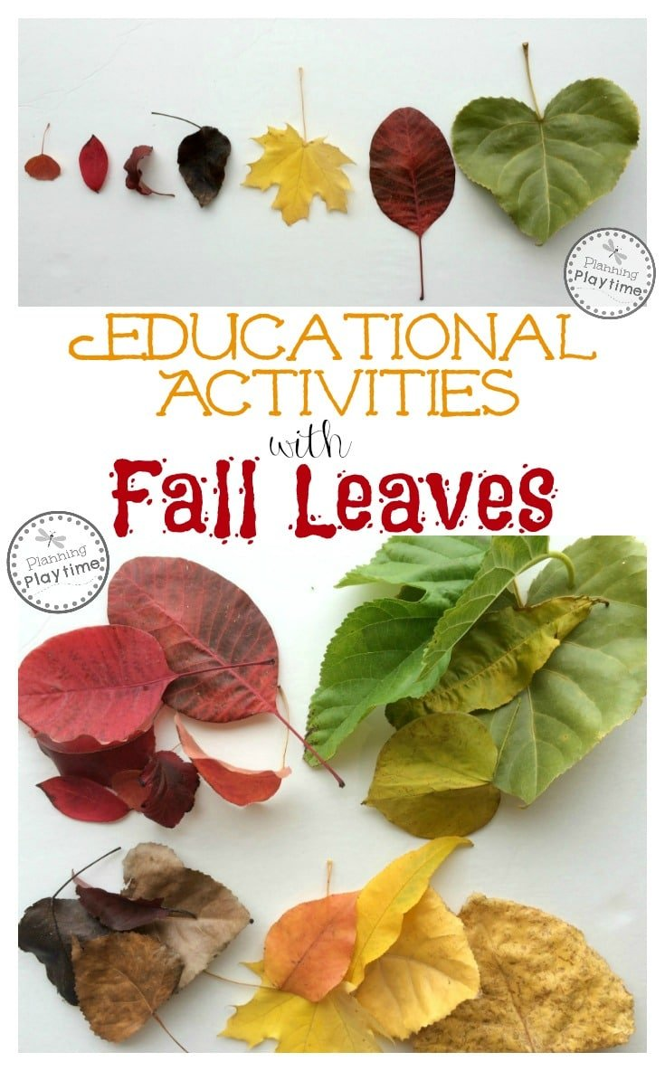 Educational Activities with Fall Leaves for Kids.
