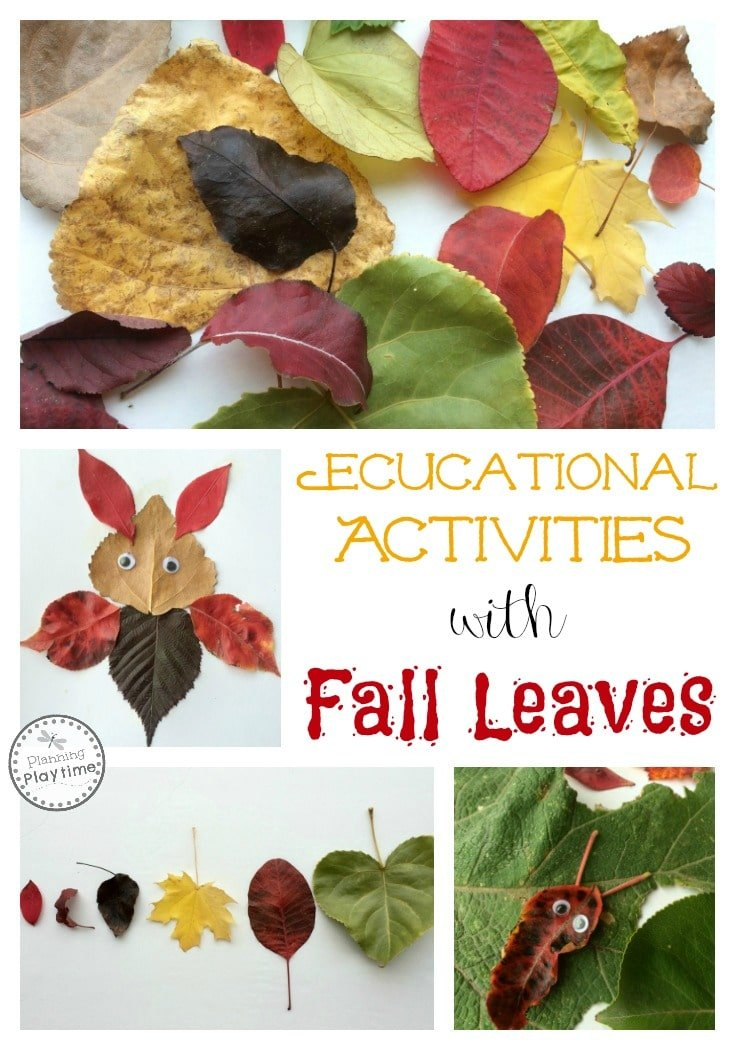 Educational Activities with Fall Leaves. So fun!