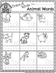 Money Division Worksheets Spring Preschool Worksheets  Planning Playtime Natural Selection Simulation Worksheet Excel with Divisibility Rules Worksheets Grade 6 Word  Spring Preschool Worksheets For April  Trace And Write Animal Names  Persuasive Essay Worksheets Excel