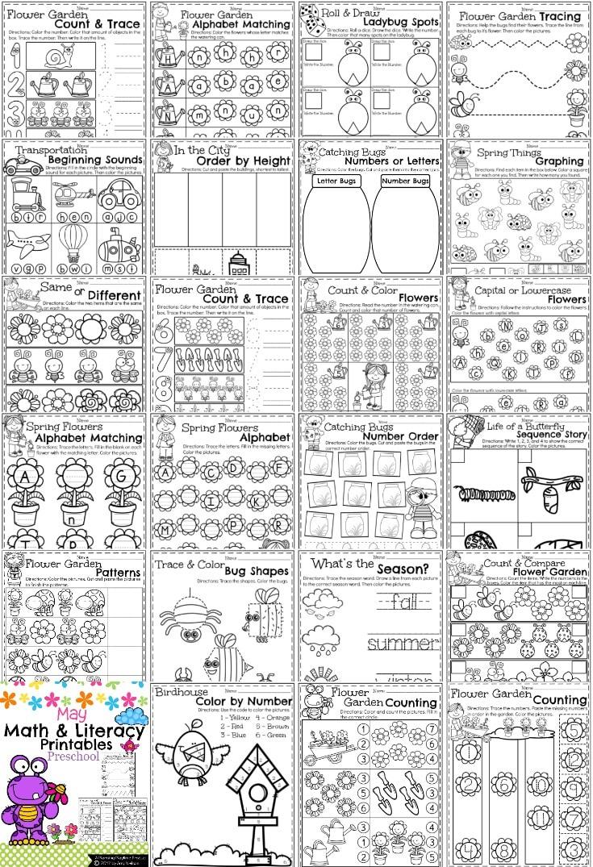 worksheet. Pre School Worksheets. Grass Fedjp Worksheet Study Site