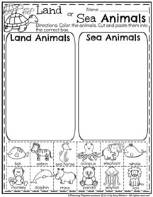 First Grade Summer Worksheets - Word Sort
