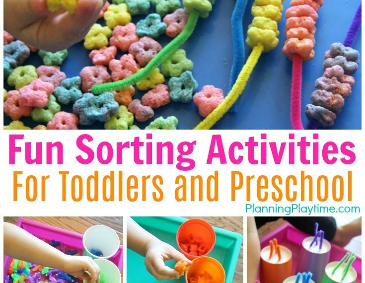 Fun Preschool Sorting Activities