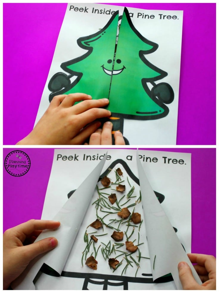 Christmas Science and Sensory Craft for Preschool