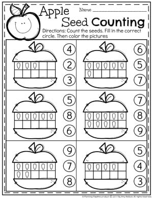 Seed Counting Activity for Preschool - Fall Preschool Unit.