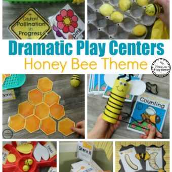 Dramatic Play Bees