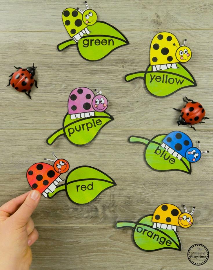Ladybug Color Matching Preschool Bug Activities for Spring #preschool #bugs #bugtheme #bugactivities #preschoolactivities #preschoolcolors