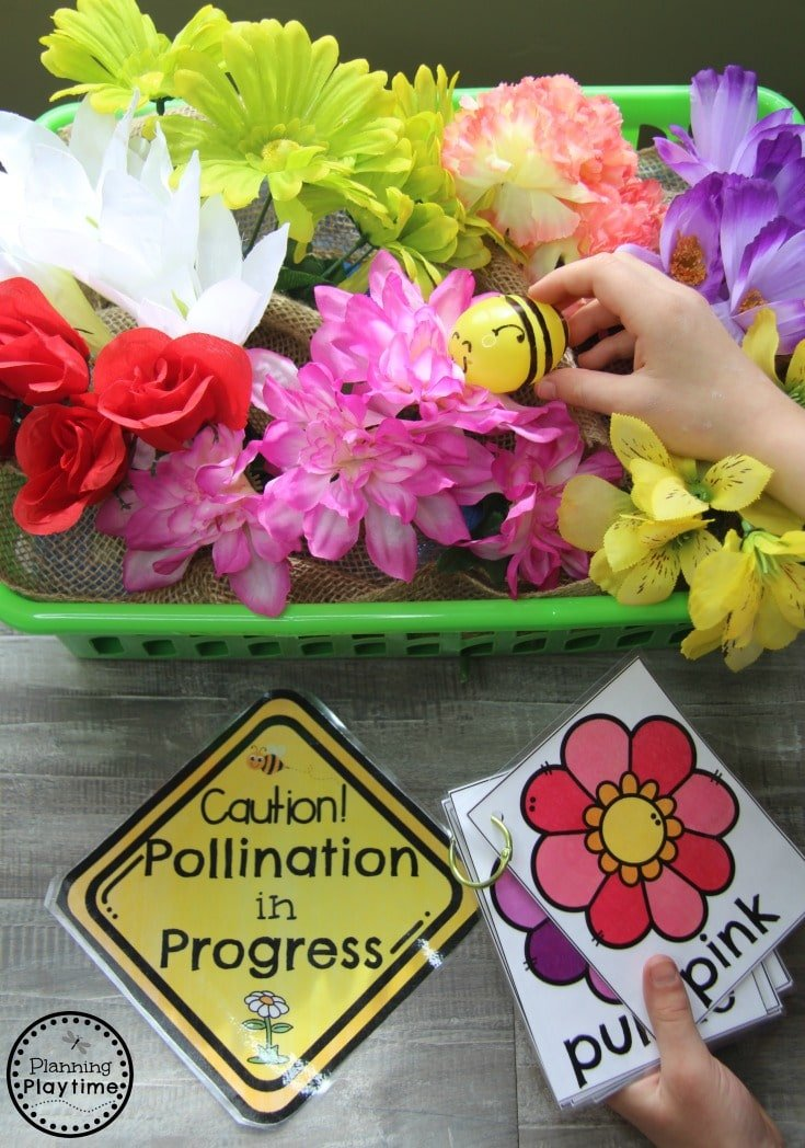 Pollinating Flowers Color Patterns - Honey Bee Dramatic Play Centers for Preschool #preschool #dramaticplay #dramaticplaycenter #preschoolideas #planningplaytime