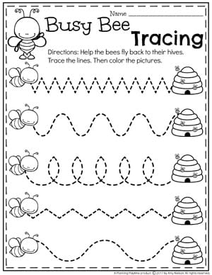 Preschool Bug Worksheets for Spring - Tracing Lines