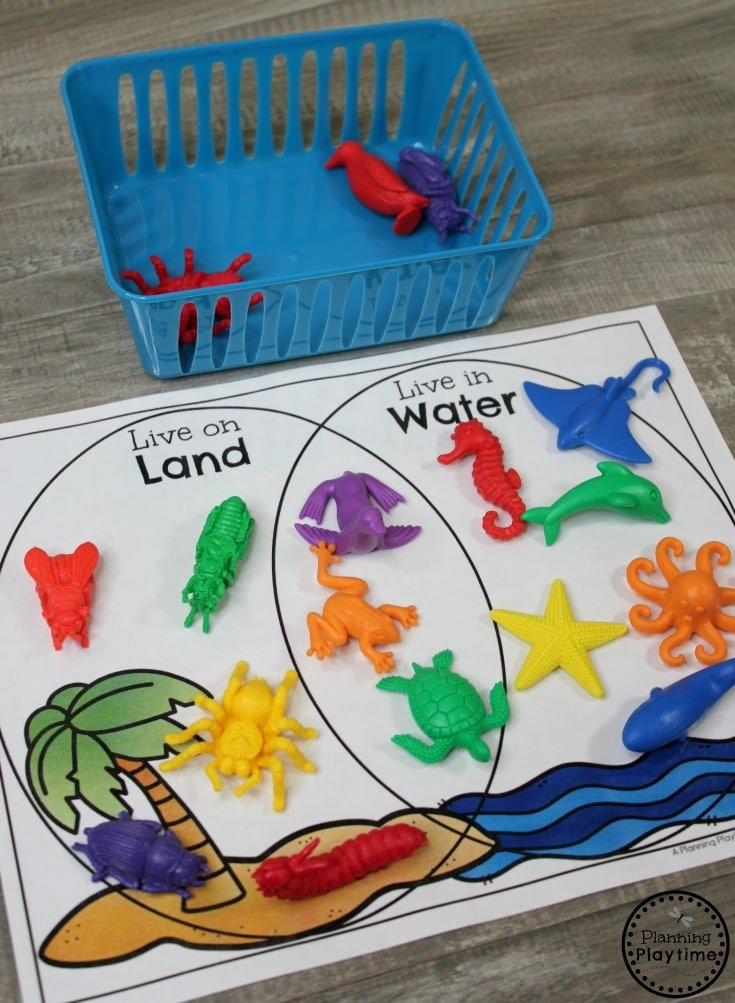 Venn Diagram Sorting Kindergarten Math Game #kindergartenmath #measurement