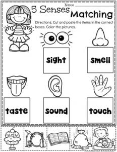 5 Senses Worksheets for Preschool #5senses #preschoolworksheets #planningplaytime