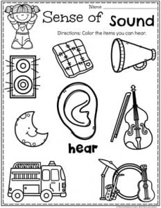 Preschool 5 Senses Worksheet - Sense of Hearing