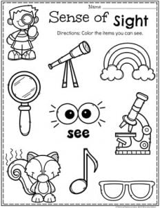 Preschool 5 Senses Worksheet - Sense of Sight #5senses #preschoolworksheets #planningplaytime