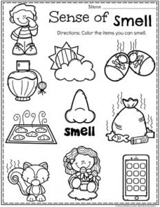 Preschool 5 Senses Worksheet - Sense of Smell