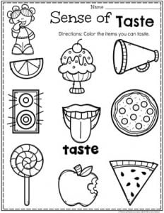 Preschool 5 Senses Worksheet - Sense of Taste #5senses #preschoolworksheets #planningplaytime