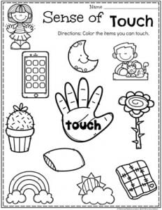 Preschool 5 Senses Worksheet - Sense of Touch
