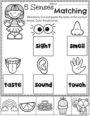 Preschool 5 Senses Worksheet #5senses #preschoolworksheets #planningplaytime