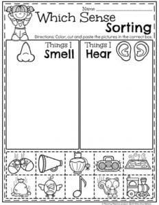 Preschool Sorting Worksheets - The 5 Senses, Smell and Sound