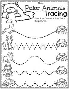 Preschool Tracing Worksheets - Polar Animals Theme #arcticanimals #preschoolworksheets #planningplaytime #tracingworksheets