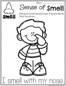 Sense of Smell Coloring Page for Preschool