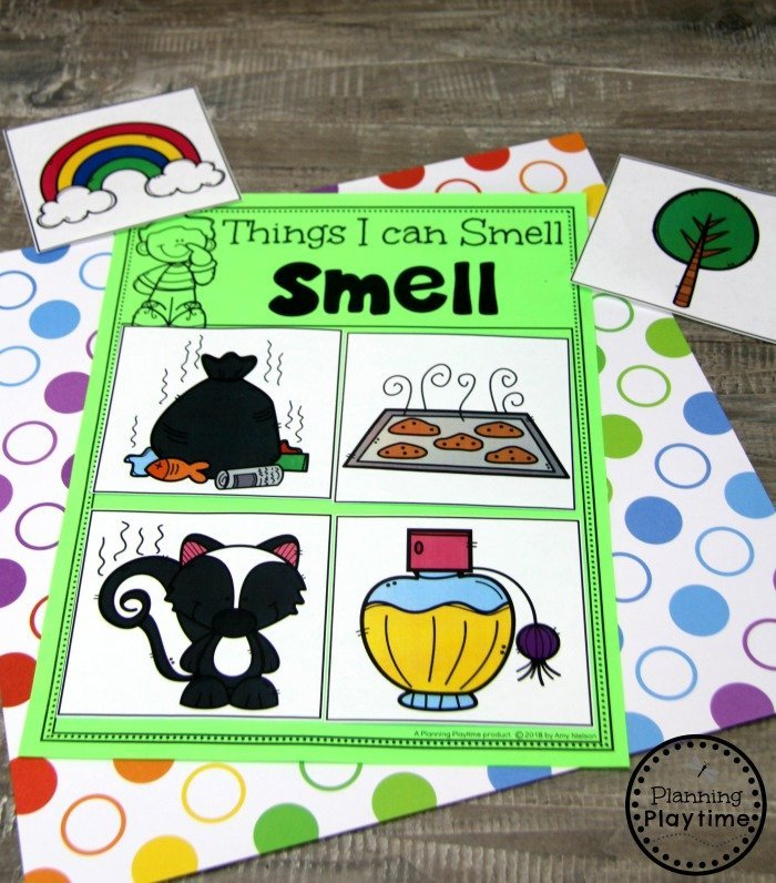 Sense of Smell Sorting Game for Preschool