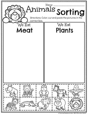 Zoo Animal Sorting Worksheets - Sorting by Characteristics 2 #zootheme #preschool #preschoolworksheets #planningplaytime