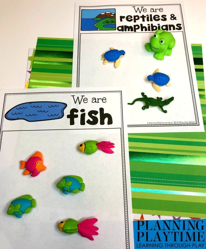 Animal Sorting Activity - Preschool Pond theme