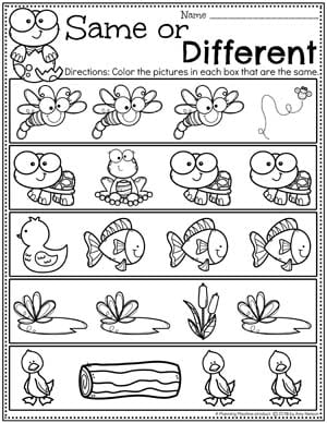 Preschool Worksheets Same or Different - Pond Theme #preschool #preschoolworksheets #pondtheme #planningplaytime