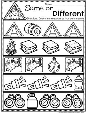 Preschool Worksheets Sorting Same or Different - Camping Theme #preschoolactivities #preschoolprintables #campingtheme #planningplaytime #preschoolworksheets